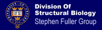Division of Structural Biology
